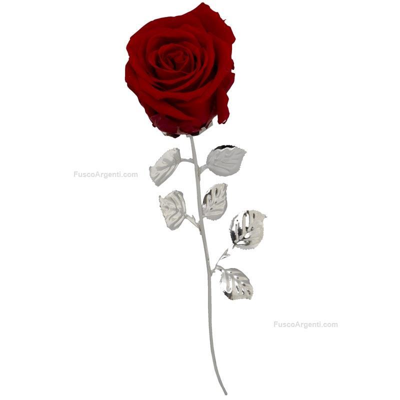Rosa Rossa Stabilizzata Bagutta Acciaio argentato